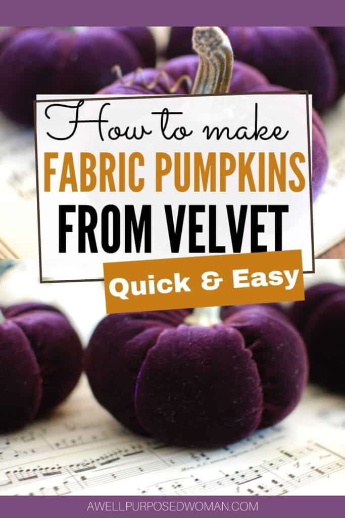 How To Make Velvet Pumpkins With Real Pumpkin Stems A Well Purposed Woman